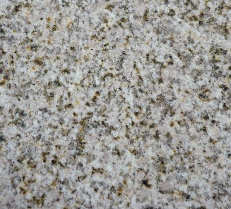 New G682 Yellow Granite